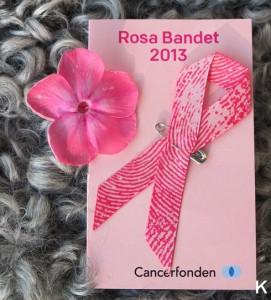 rosa-bandet-2013-41